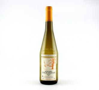 Muscadet Côtes de Grand Lieu Sur Lie Le Clos de la Butte 2012 - Maison Lemaitre